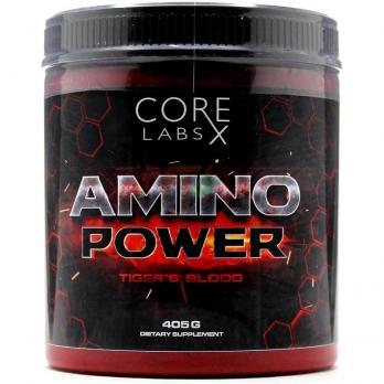 Core Labs X Amino Power (405 гр /27 порций)