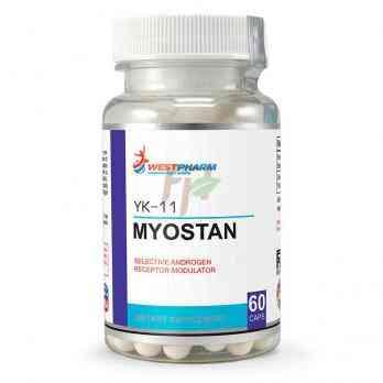 Myostan YK-11 (5 mg × 60 caps)