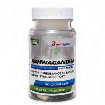 Ashwagandha (120 mg × 60 caps)