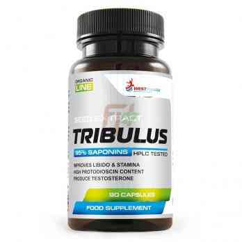 Tribulus [95% Extract]